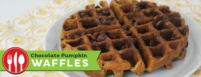 Chocolate Pumpkin Waffles