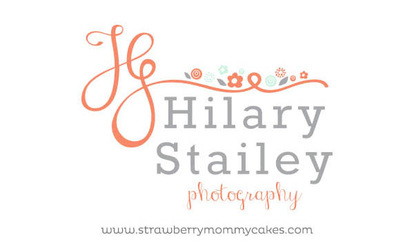 Hilary Stailey Photography Logo and Web Design by www.strawberrymommycakes.com