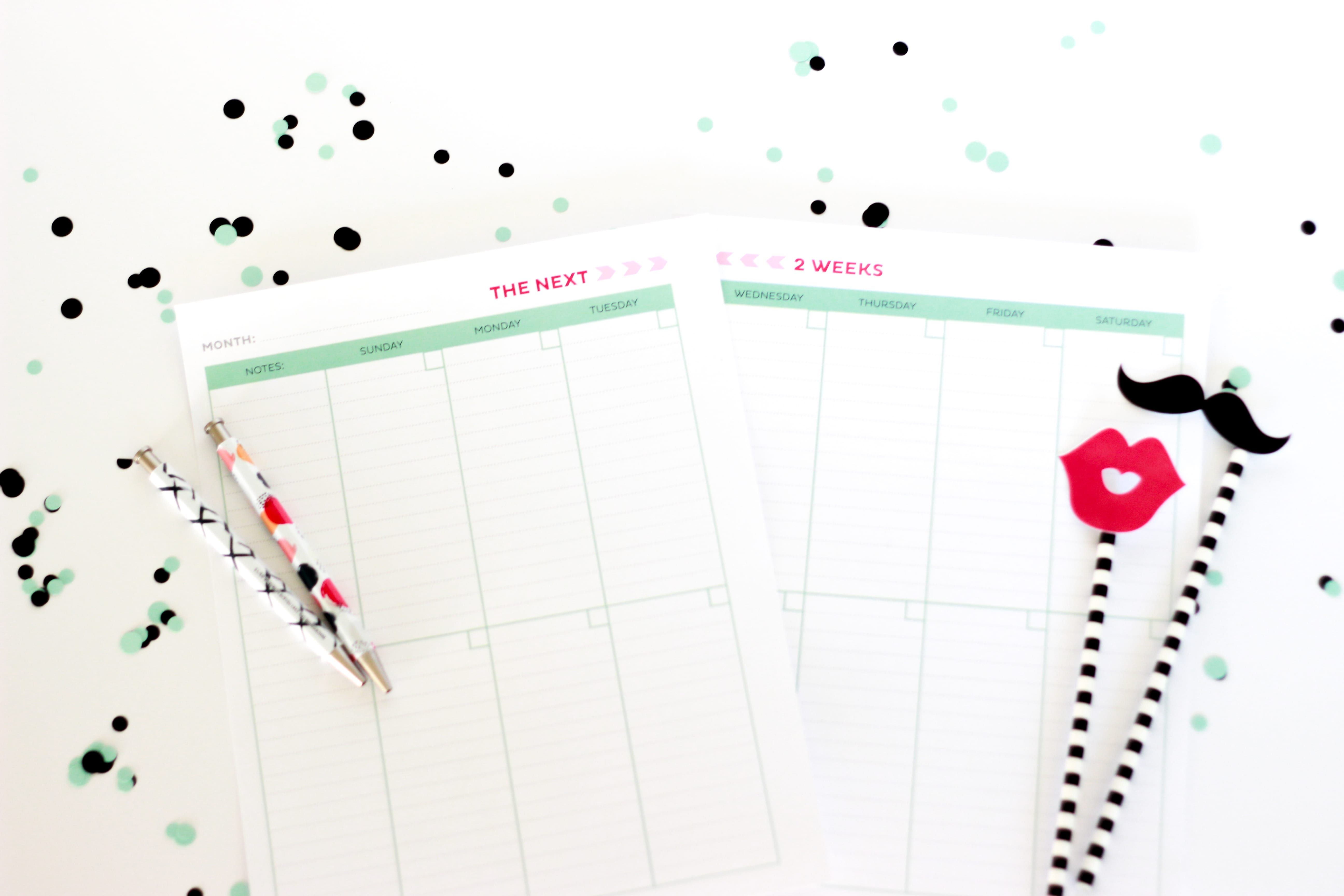 get-organized-with-the-2-week-printable-schedule-4