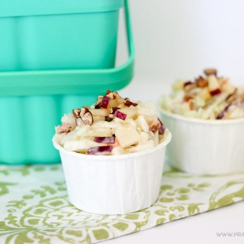 The mix of sweet and tangy makes this Apple Pecan Coleslaw the perfect recipe for picnic time! Store it in a jar and serve in paper cups for an easy side dish.