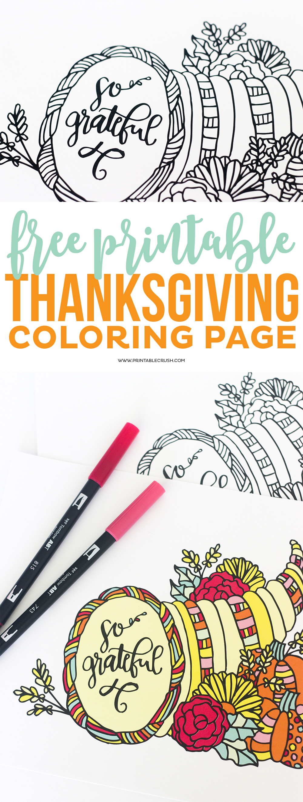 Download this pretty Thanksgiving Coloring Page for your dinner guests. It's a great coloring page for adults and children.