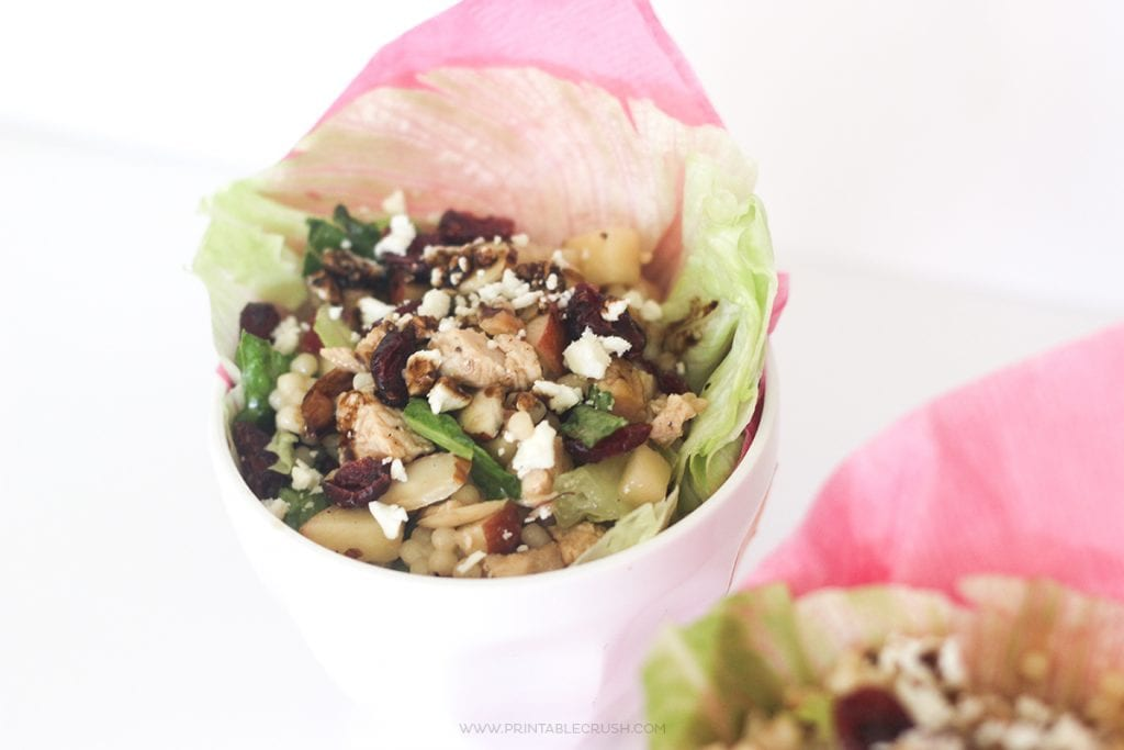 Chicken Cranberry Lettuce Wrap Recipe