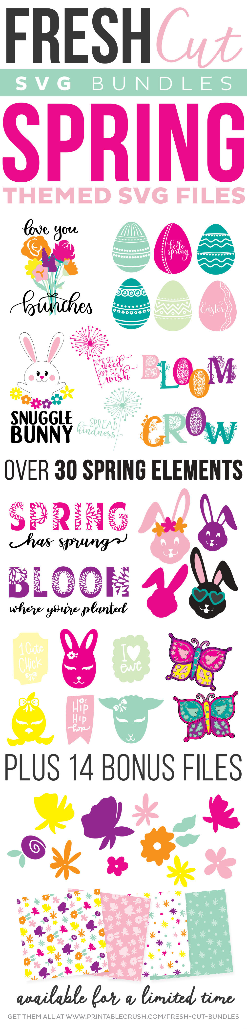 Get the Spring Fresh Cut SVG Bundle! Over 30 elements, plus 14 bonus files!